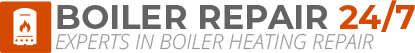 Tiverton Boiler Repair Logo